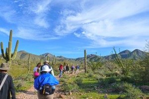 Sonoran Preserve Hiking Secrets | RTX Traveler Magazine
