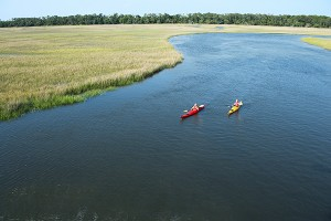 Kayak Hilton Head with Water-Dog Outfitters
