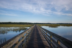 Huntington Beach State Park - Murrells Inlet, South Carolina