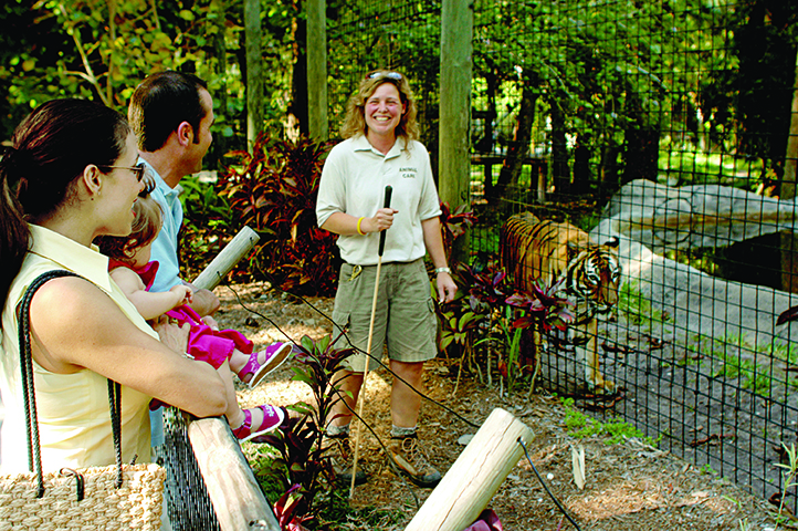 Daily Meet the Keeper events allow Naples Zoo visitors to learn more about the many animals, include these rare Indonesian tigers.