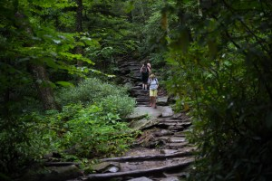 The trek up Rough Ridge Trail, in the shadow of Grandfather Mountain off the Blue Ridge Parkway, offers lush forests and a stunning view at the top.