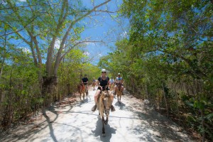 Bavaro Adventure Park | Dominican Republic | RTX Traveler Issue 14