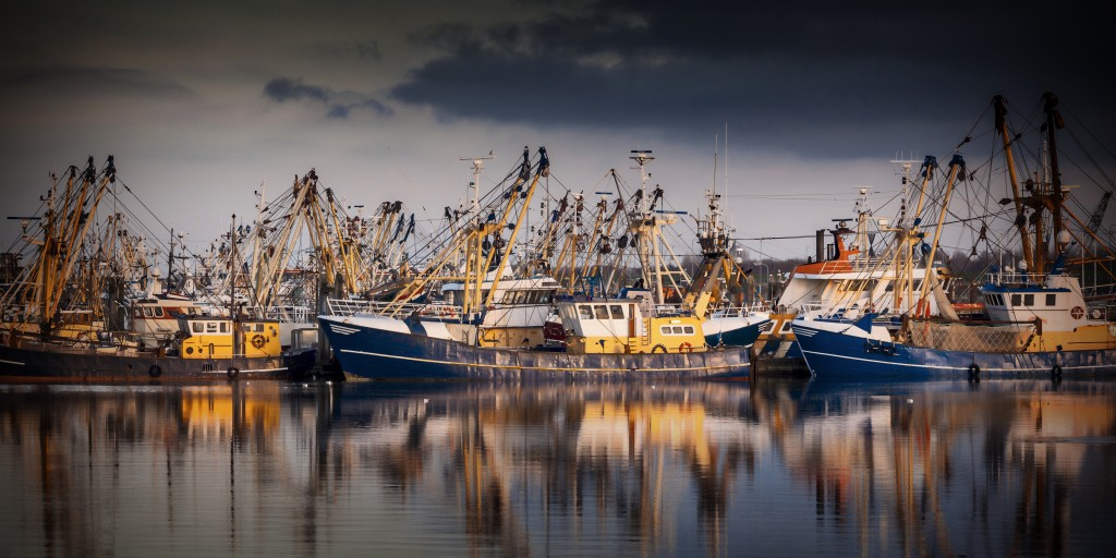 Fishing ships in Lauwersoog. Which harbours one of the biggest fishing fleets of the Netherlands