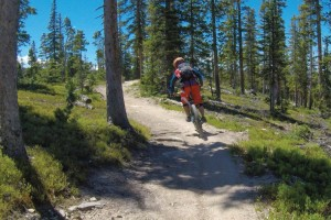Breaking the Cycle: Hard Charging the Rocky Mountains