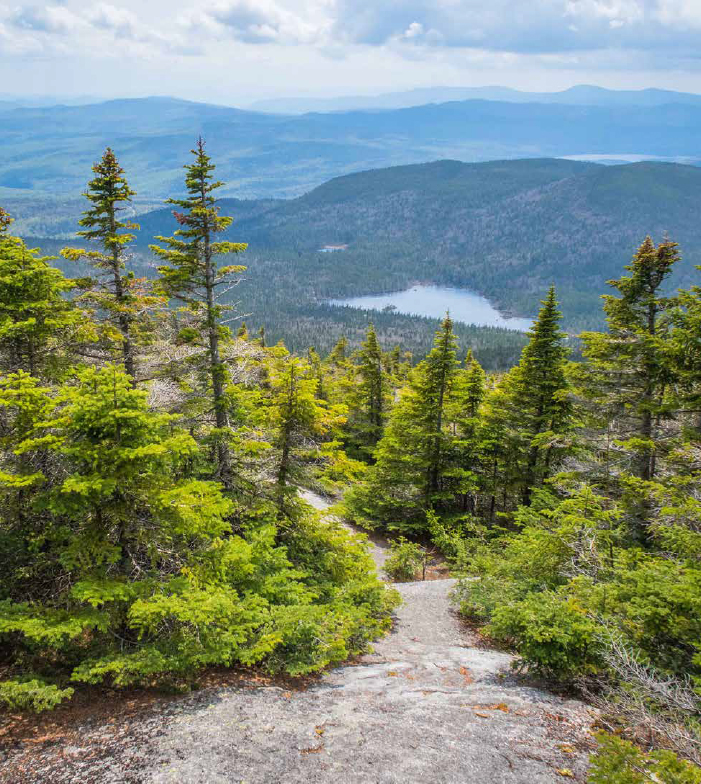 Rangeley Maine hiking trail