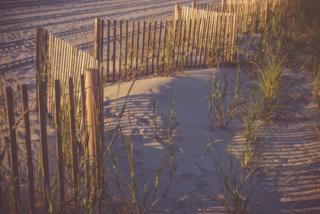 Surfside Beach (32)