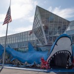 Jaws Gift Shop