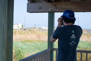 Avian Ease | How the SPI Birding and Nature Center Offers Respite for the Weary Flyer